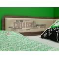 Детская кровать от 3 лет Колледж 3